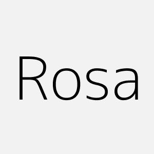 Significado del nombre Rosa